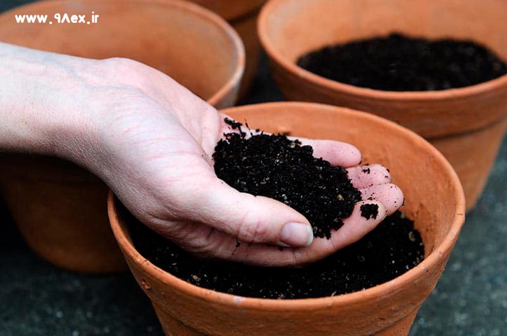 راهنمای-خاک-گلدان